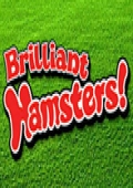 Brilliant Hamsters! cover