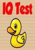 IQ Test cover