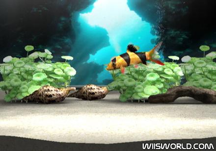 My Aquarium on WiiWare